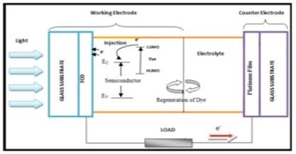 Electrical Modeling of Dye-Sensitized Solar Cells for Improving the Overall Photoelectric Conversion Efficiency